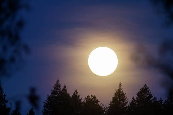 Super Full Moon Poster
