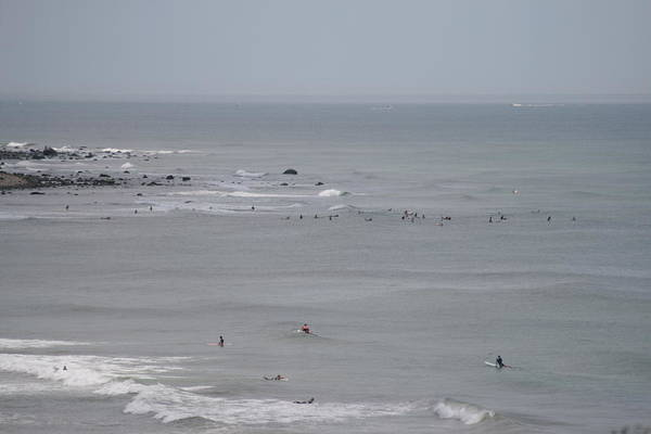Surfing Ditch Plains Montauk Poster