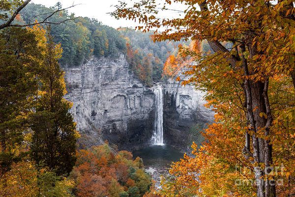 Taughannock Autumn Poster