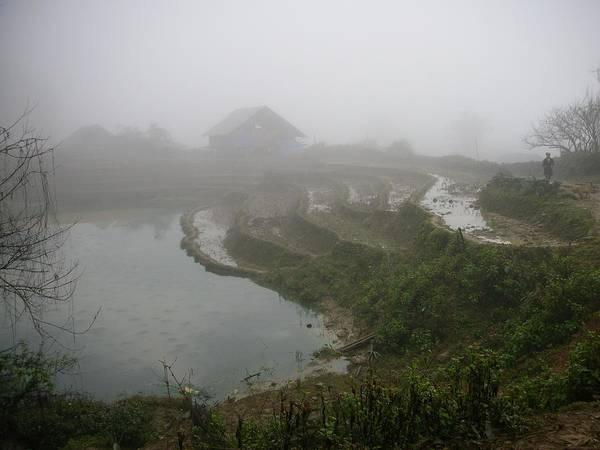 Terraces In Sa Pa Village Vietnam Poster