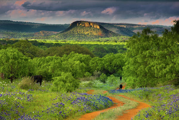 Texas Hill Country Ranch Road Poster