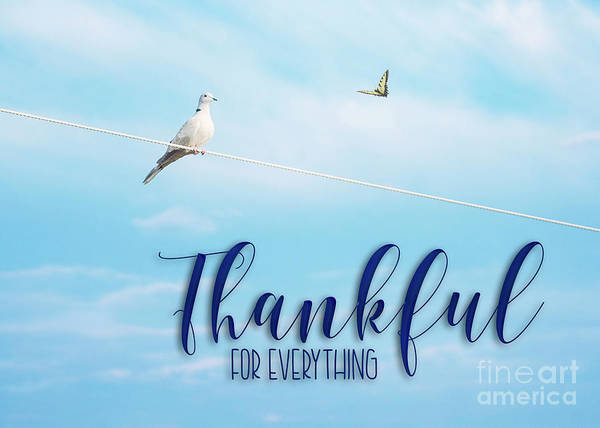Thankful For Everything Poster