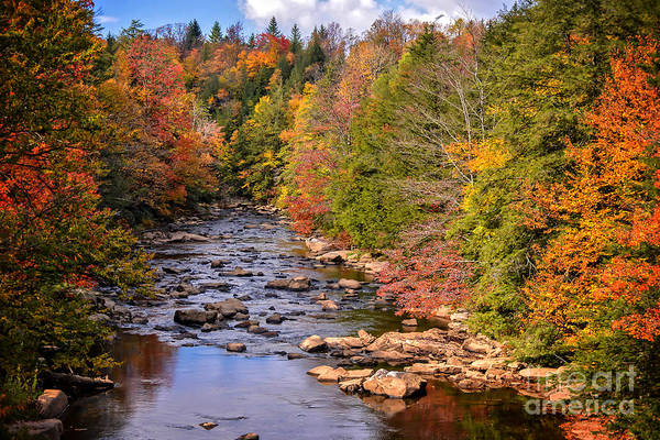 The Blackwater River In Autumn Color Poster
