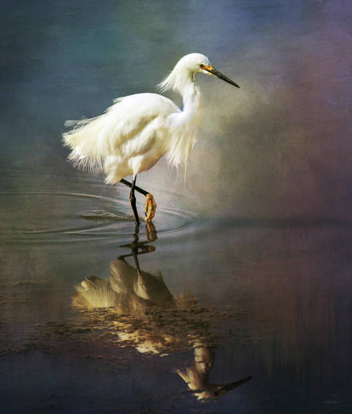 The Ethereal Egret Poster