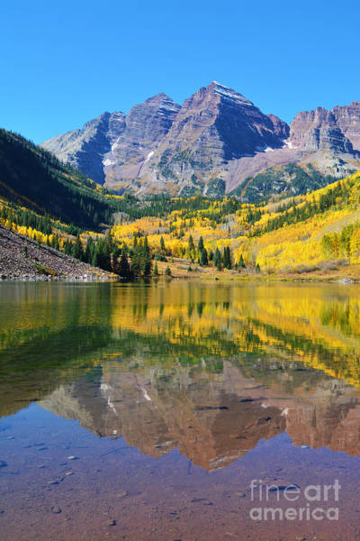 Poster featuring the photograph The Maroon Bells by Kate Avery