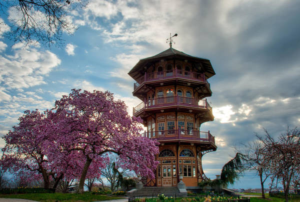 The Pagoda In Spring Poster