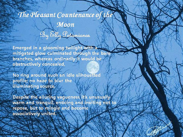 The Pleasant Countenance Of The Moon Poster