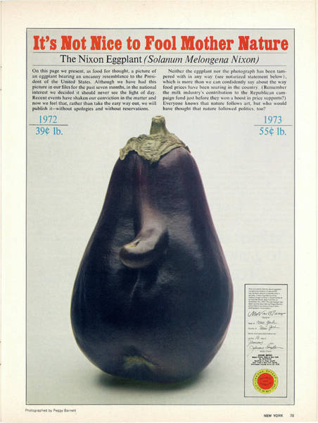 Poster featuring the photograph The Richard Nixon Eggplant by Peggy Barnett