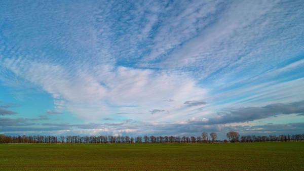 The Springtime Sky. Horytsya, 2010. Poster