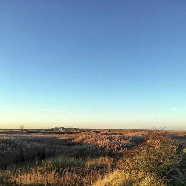 Thornham Marsh Lit By The Setting Sun Poster