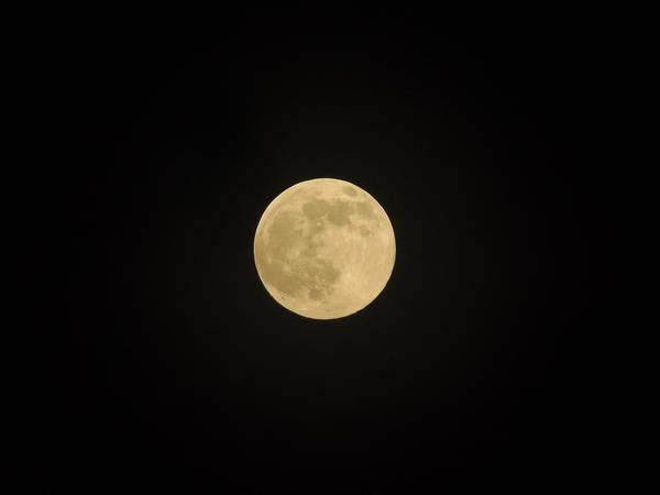 Thunder Moon Poster