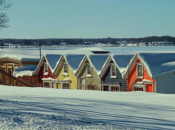 Winter View Ti Park Boathouses Poster