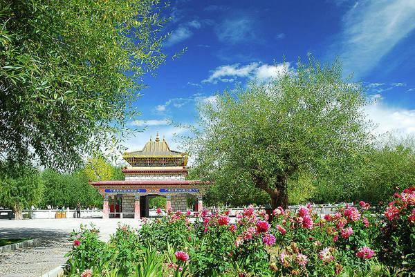 Tibet Scenery In Autumn Poster