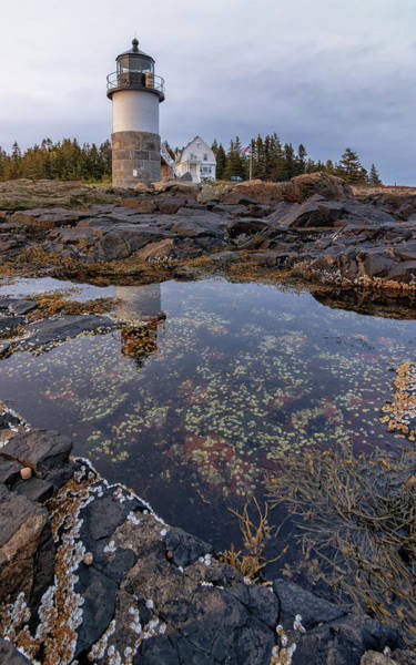 Tide Pools At Marshall Point Lighthouse Poster