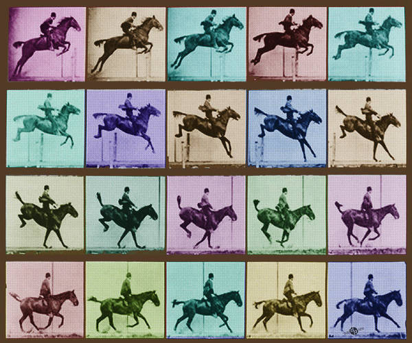 Time Lapse Motion Study Horse And Rider Color Poster