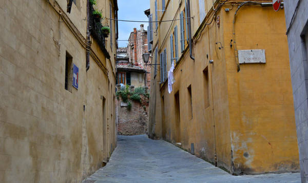 Tiny Street In Siena Poster