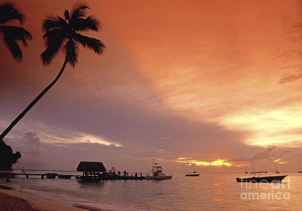 Poster featuring the photograph Tobago, Pigeon Point Sunset, Caribbean Sea, by Juergen Held