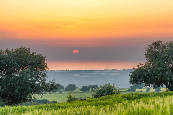 Poster featuring the photograph Sicilian Countryside At Sunset by Mirko Chessari