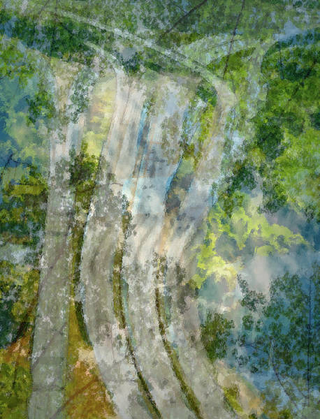 Trees Over Highway Poster