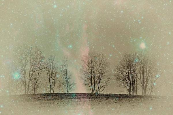 Tress In Starlight Poster