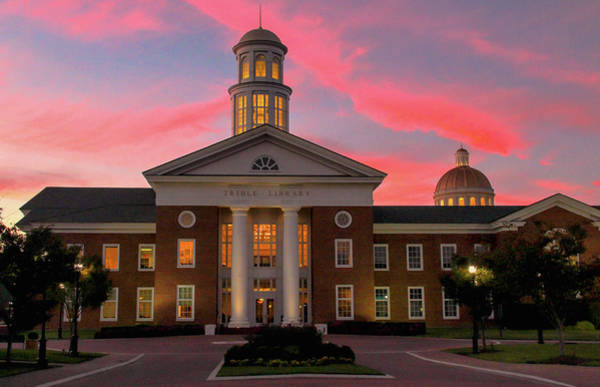 Trible Library Pastel Sunset Poster