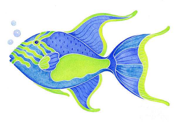 Tropical Blue Triggerfish Poster
