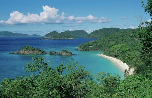 Trunk Bay And Beach Poster