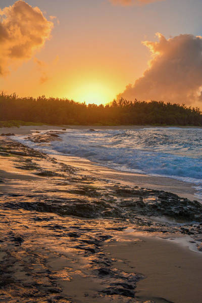Turtle Bay Sunset 3 Poster