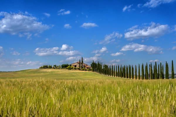 Tuscan Estate 2 Poster