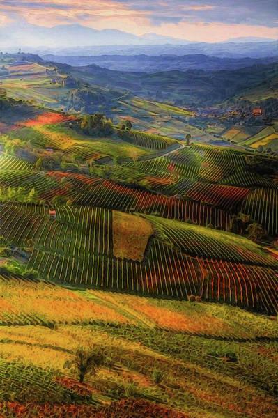Tuscany, Italian Wineyards  Poster