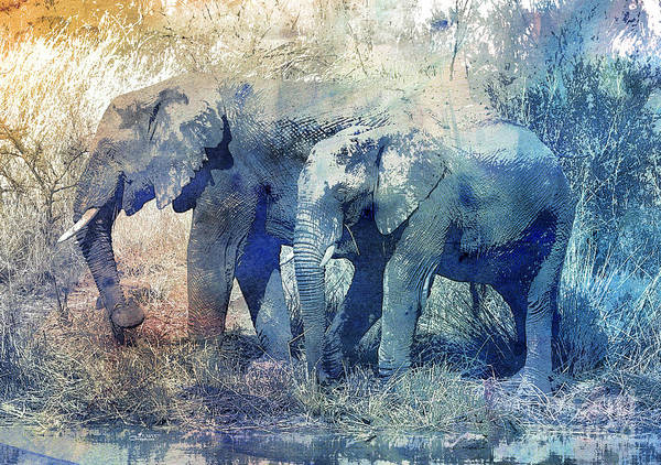 Two Elephants Poster