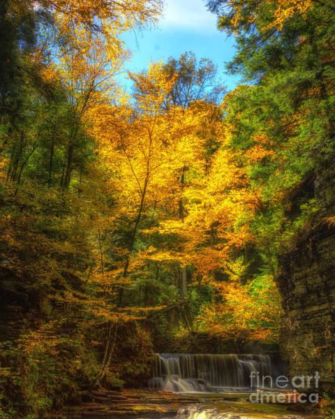 Upper Pinnacle Falls Poster