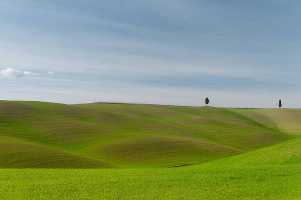 Poster featuring the photograph Val D'orcia, Toscana by Mirko Chessari