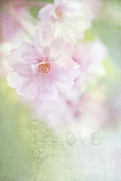 Valentine Love Poster