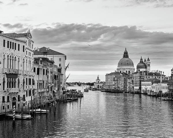 Venice Morning Poster