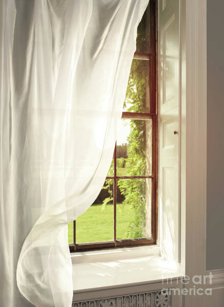 Voile Curtains Blowing In The Breeze Poster