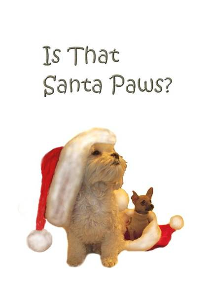 Waiting For Santa Paws Poster