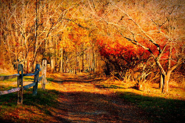 Walking Down The Autumn Path Poster