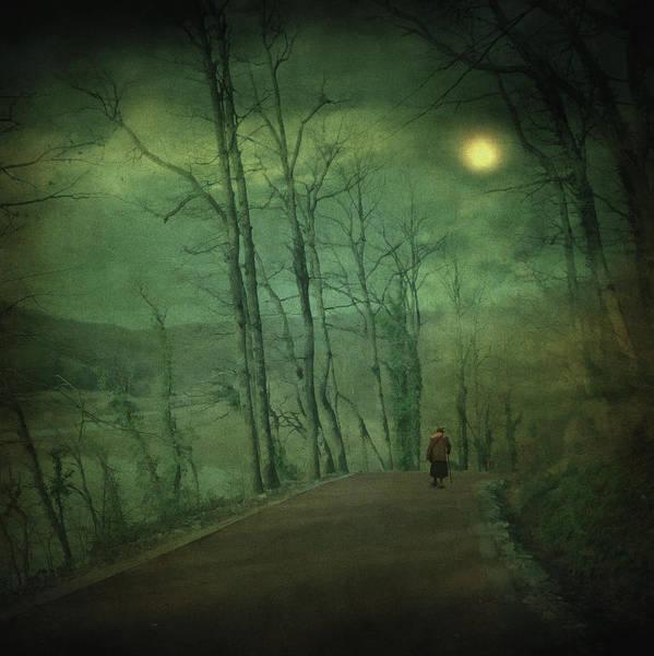Wanderer Poster