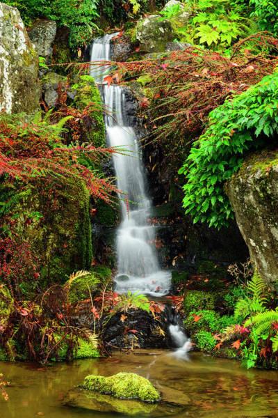 Waterfall At Kubota Garden Poster