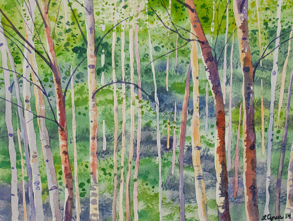 Watercolor - Magical Aspen Forest After A Spring Rain Poster