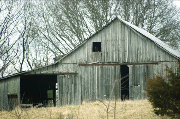 Weathered Barn In Winter Poster