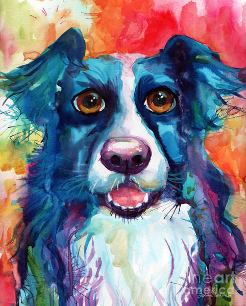 Whimsical Border Collie Dog Portrait Poster