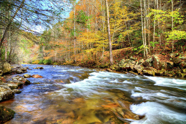 Whitetop River Fall Poster