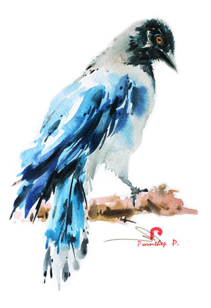 Wild Bird Painting 2 Poster