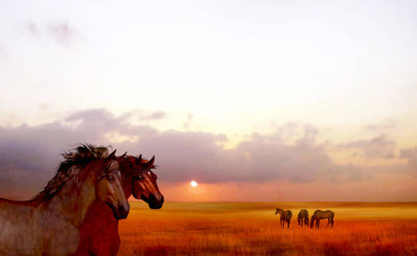 Wild Moorland Ponies Poster