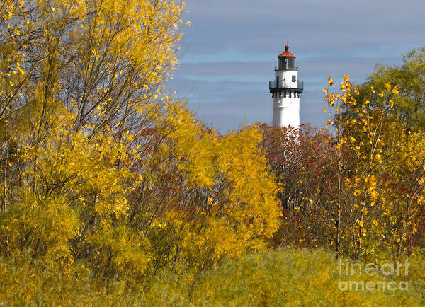 Wind Point Lighthouse In Fall Poster