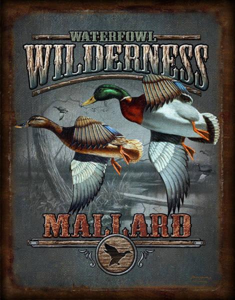 Wilderness Mallard Poster