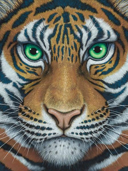 Wils Eyes Tiger Face Poster