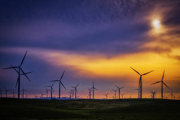 Windmills At Sunset Poster